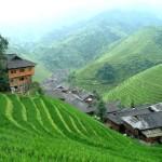 Roberto Fanfani: Sviluppo economico e zone rurali in Cina