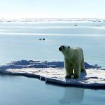 Mario Agostinelli: La crisi che depenna il clima