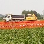 Massimo Corsini: Biogas a Galliera (Bologna)