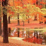 Quando l'estate e l'autunno si amano. Tre canzoni scelte da Marina