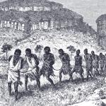 Nello Rubattu: Paolo Mieli e gli schiavi fonte di progresso