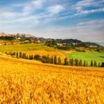 Francesco Cancellato: Dal biologico alla bioeconomy. Torneremo tutti agricoltori