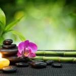 Leonardo Boff: La filosofia dell'aver cura, il Feng Shui