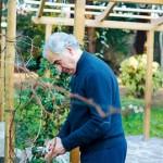 Padre Luciano Mazzocchi: Lettera di Pasqua dalla comunità Vangelo e Zen
