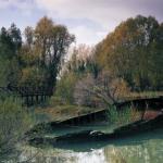 Oliva Novello: Stillano immagini (lungo il Sile)