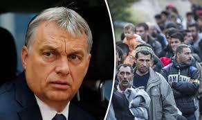 Roberto Dall'Olio: Il capo Orban