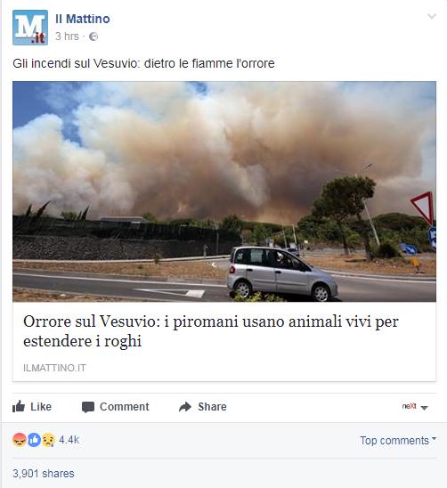 Roberto Dall'Olio: Brucia la pietà