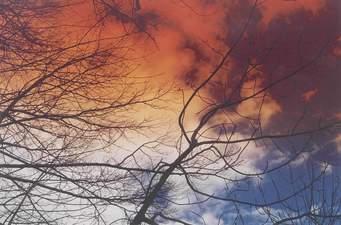 Roberto Dall'Olio: Nomade è il vento