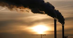 Bruno Giorgini: Evoluzione umana e cambiamento climatico