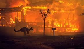 Bruno Giorgini: Il cambiamento climatico brucia l'Australia