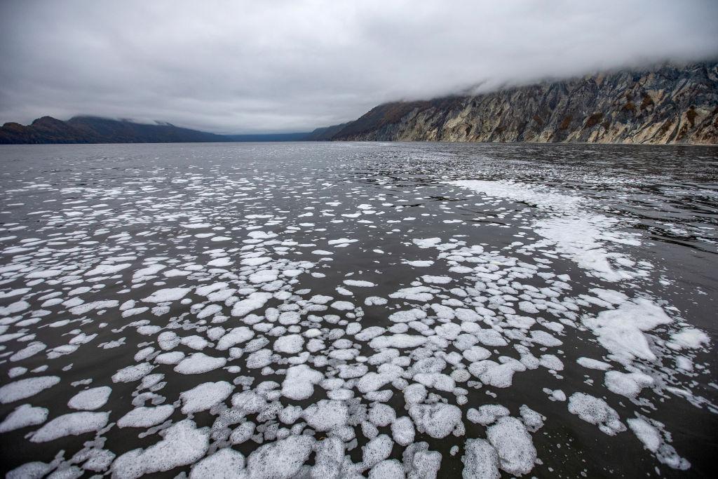 Roberto Dall'Olio: Poesia sul disastro ambientale in Kamchatka
