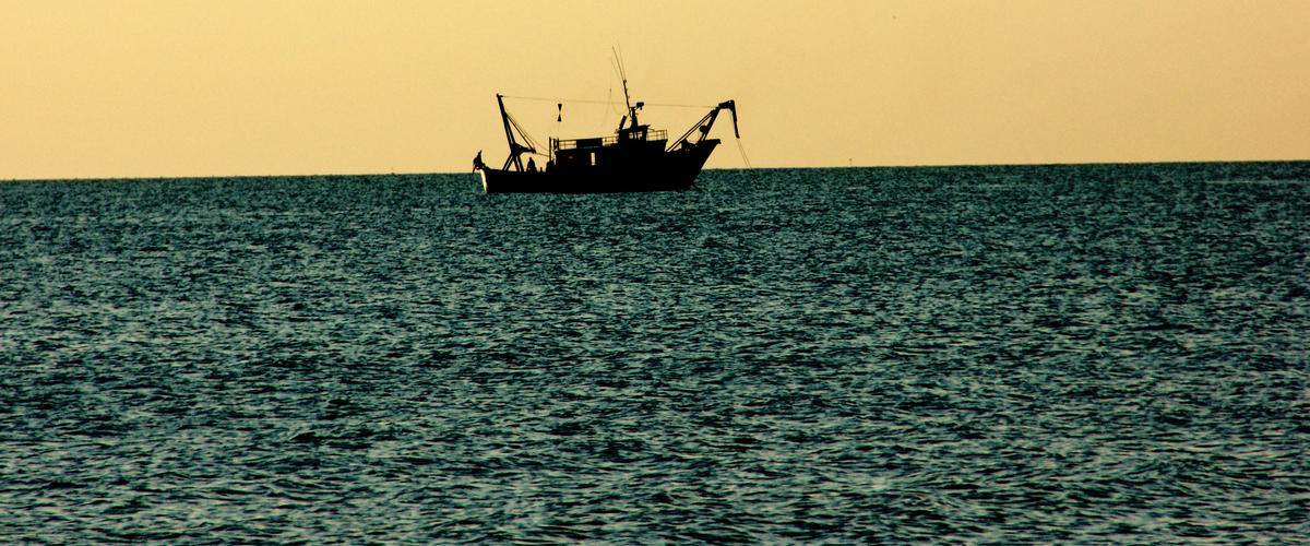 Roberto Dall'Olio: I pescatori di Mazara arrestati a Bengasi