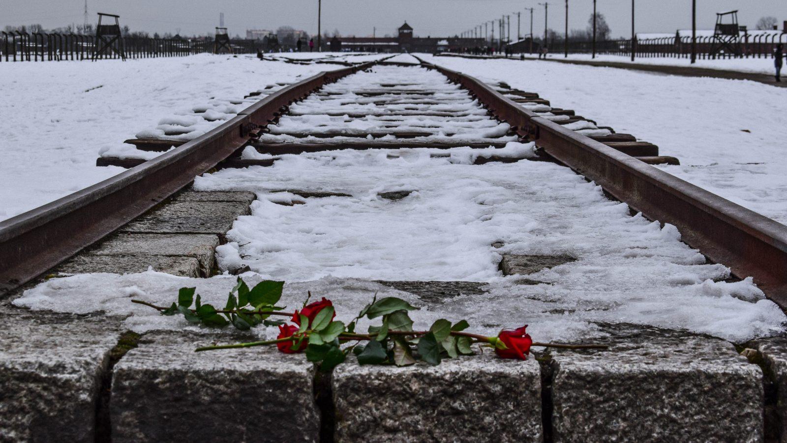 Roberto Dall'Olio: Poesia del giorno della memoria