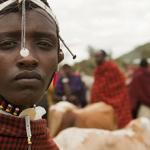 Come aiutare i Masai e fermare la svendita del Serengeti