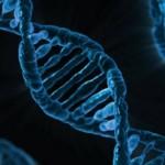 Anna Rollier: La ricerca genetica è compatibile con la fede?